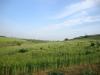 Земеделска земя - 15дка